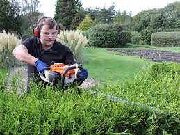 Small Picture Horticulture and Landscaping Courses at Enfield Capel Manor College