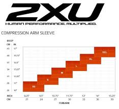 2xu Compression Arm Sleeves The Clymb