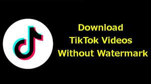 How to Download TikTok Videos Without ...