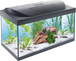 Tetra Starter Line Led Aquarium Op Aquarium Expertsnl Frank