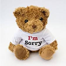 new i am sorry teddy bear cute and cuddly sorry gift
