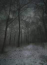 Dark Winter Night Wallpaper posted by ...