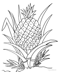 Printable Pineapple Coloring Pages For Kids | Cool2bKids