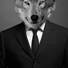 Willem Wolf Facebook, Twitter & MySpace on PeekYou