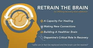 Image result for brain recovery