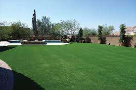 Artificial Lawns Gallery Celebrity Greens