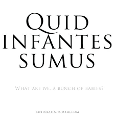 Latin Quotes Beauteous Unique Latin Quotes About Life Or Quote 48 Latin Life Quotes Sayings