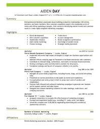 Resume Format For Marketing Professionals It Resume Cover Letter