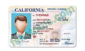 License Drivers Template Psd Save