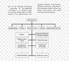 Organizational Chart Of Princess Diana Hospital Imaging