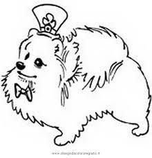 Disegno Volpino2 Animali Da Colorare