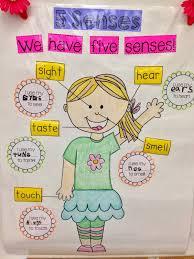 anchor charts for kindergarten kindergarten smiles five senses