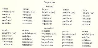 Subjunctive Mood Latin For Rabbits