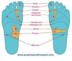 Foot Organ Chart Acupressure Foot Chart Reflexology Foot Chart Learn How To