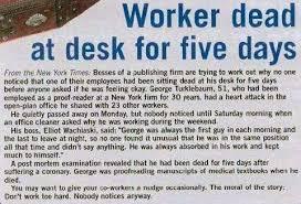 dead end job dead end job