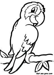 Bird Coloring Birds Coloring Pages For Kids Angry Birds Colouring
