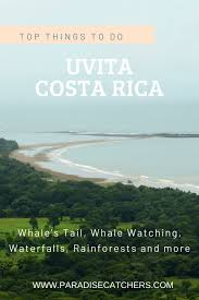 Top Things To Do In Uvita Costa Rica Paradise Catchers