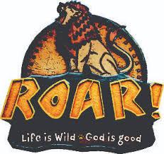 Image result for roar vbs