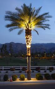 palm tree light fixture light fixtures