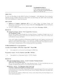 Objective For Resumes Classy General Objectives For Resume Objectives Resume Curriculum Vitae For