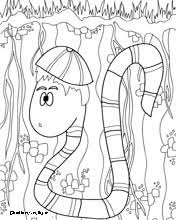 Small Picture All About Earthworms Second Grade Pinterest School