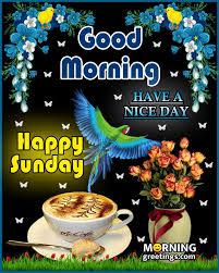 50 good morning happy sunday images