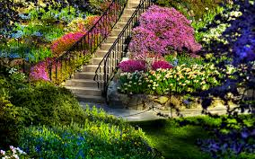 Small Picture 259 Garden HD Wallpapers Backgrounds Wallpaper Abyss
