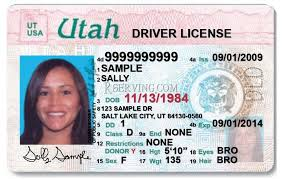Law Driver's Hearing License S Salt Lawyer Lake City Greg