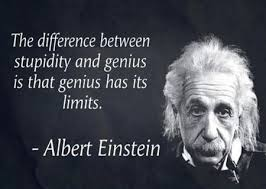 Albert Einstein Quotes Stupidity When You Look At Yourself From A Beauteous Albert Einstein Quotes
