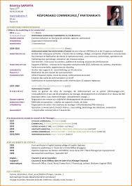 doc cv dut gea 9 cv responsable commercial lettre de preavis