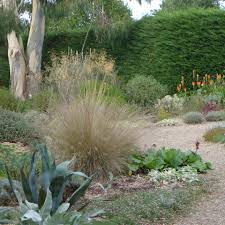 garden design designing a dry gravel