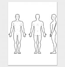 Human Body Outline Png Picture 695442 Massage Clipart Body