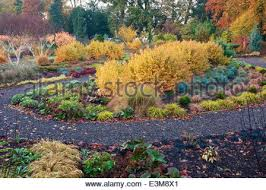 Small Picture The Winter Garden in autumn Bressingham Gardens Norfolk UK