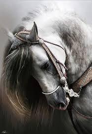 أحجية حصان إسباني للكبار ، 1000 قطعة ، أحجية منظر طبيعي ، نمط عمل فني ،  هدية ، لوحة جدارية DIY