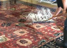 can you shampoo a wool rug wool rug cleaning services clean wool rugs shampoo wool rug