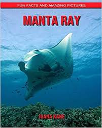Amazon   Manta ray: Fun Facts and Amazing Pictures   Kane, Juana ...