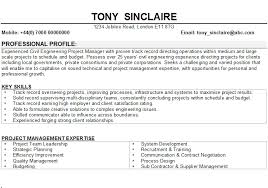 Examples Of Resumes   Samples Quantum Tech Intended For          cv examples