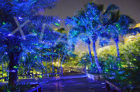 romantic tree decoration with rf remote garden laser