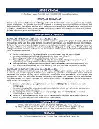 Training Consultant Resume Trainingonsultant Job Description Template Beauty Resume Examples 19