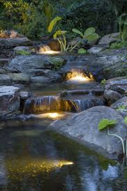 Aquascape Pond Lights Light Up Your Night Own Your Oasis Ponds Backyard Water
