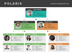 Online Organizational Chart Maker Venngage