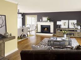 Painted Living Room Living Room Paint Samples Living Room Design Ideas