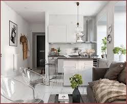 Basement Apartment Decorating Ideas Decor Awesome Decorating Ideas