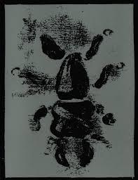 4 A.M. Wallpaper (A Memorate)