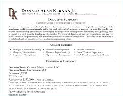 Executive Summary Resume Stunning Example Of Executive Summary Resume Big Skills For Swarnimabharathorg