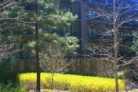 callaway gardens lodge. The Lodge And Spa At Callaway Resort \u0026 Gardens: Room Views Gardens