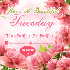 Tuesday Good Morning Quotes Best of Good Morning Tuesday Image Have A Beautiful Tuesday Think Positive