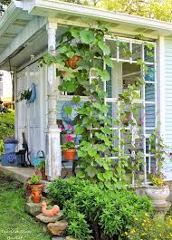 office gardening. 10 Gorgeous DIY She Shed Makeover Ideas. These Ladies Turned A Tool Into Office Gardening D