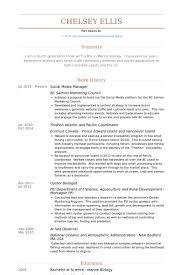 Management Resume Modern Modern Resume Template Social Media Manager Resume Samples Visualcv