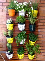 Balcony Garden What Plants Grow Best On A Balcony Garden A My Productive